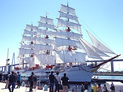 「海の貴婦人」青空に映え 海王丸が総帆展帆