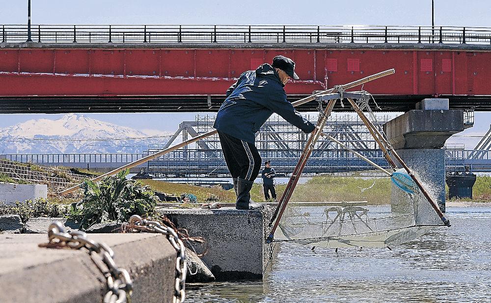 スベリ漁を行う漁師=白山市美川南町の手取川河口