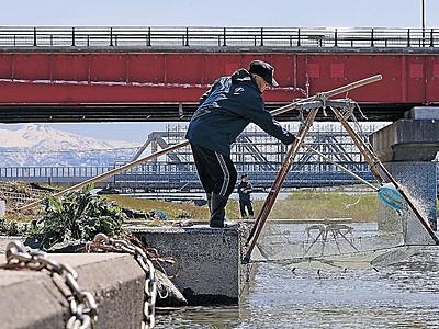 美川でスベリ漁 小松で今年最高24・8度