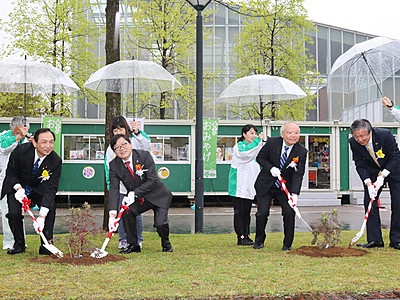 砺波と台湾友好深める 観光客1万人記念し植樹