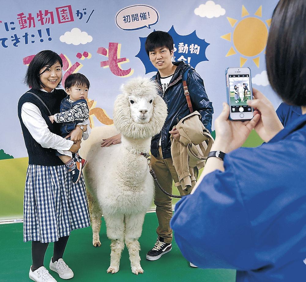 アルパカと記念撮影する家族連れ=金沢市のめいてつ・エムザ
