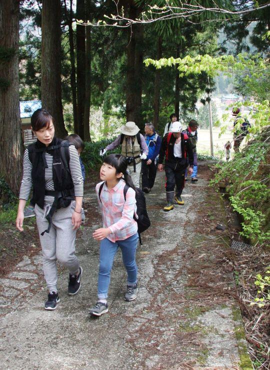 新緑の中を歩く「塩の道」道開きの参加者=29日、糸魚川市根知地区
