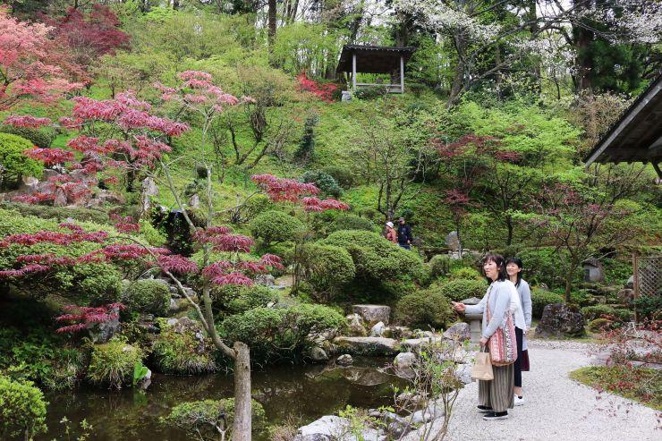 春の一般公開が始まった普済寺の庭園=29日、村上市大場沢