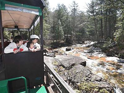 ひんやり、森の空気満喫 上松・赤沢自然休養林