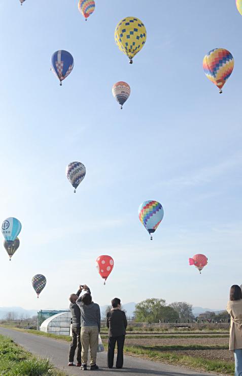 色とりどりの気球が空に浮かんだ佐久バルーンフェスティバル=佐久市