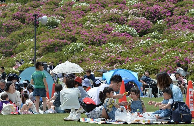 GW後半がスタートし、大勢でにぎわう「さばえつつじまつり」=3日、福井県鯖江市の西山公園
