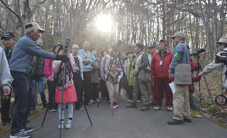 木の上の野鳥を望遠鏡で観察する塩嶺小鳥バスの参加者