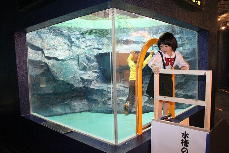 水槽の中に入って遊ぶ子ども=9日、上越市西本町4の市立水族博物館