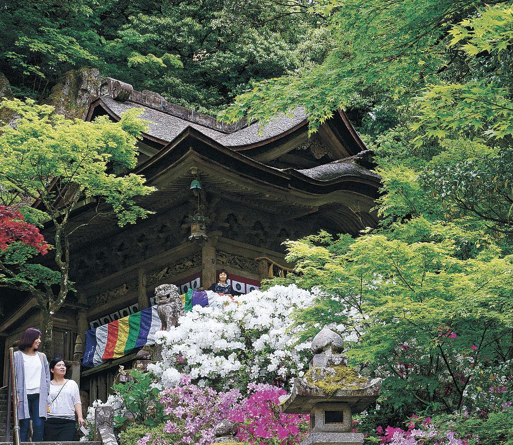 新緑の美しい境内を散策する参拝客=小松市の那谷寺