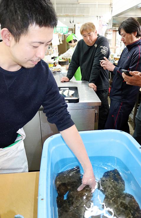 試験的に捕ったマコガレイの品質をチェックする片口社長(左)と手持会長(右から2人目)=片口屋