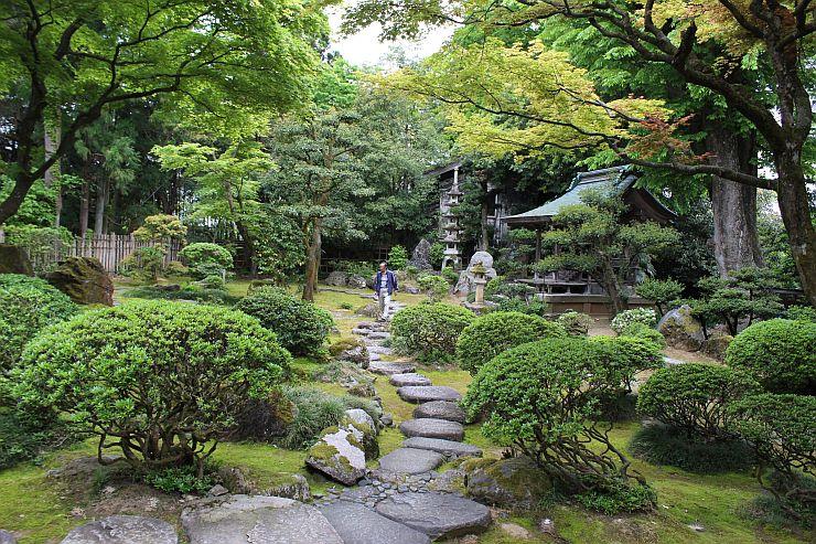 庭園ツアーの目玉となる椿寿荘の庭=10日、田上町田上