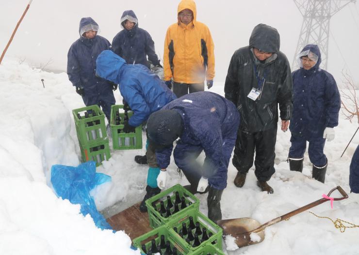 雪中で熟成させた日本酒を取り出す参加者=13日、中央アルプス千畳敷