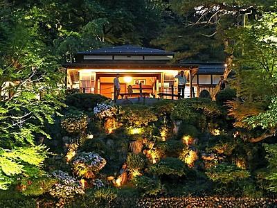 新緑の美闇に輝く 長岡・楽山苑ライトアップ