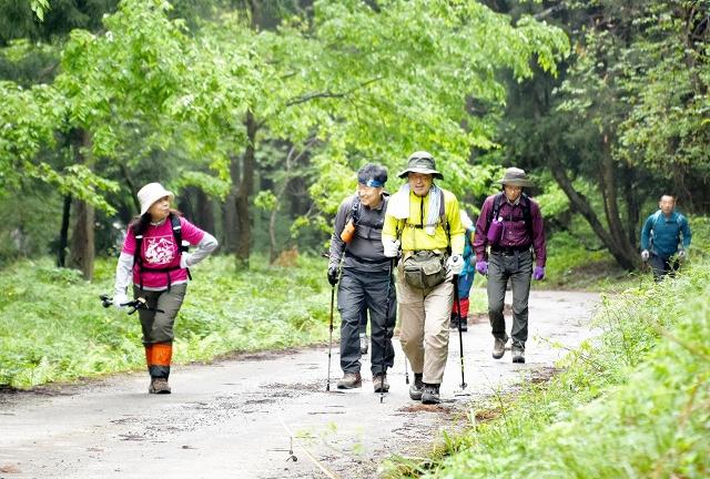 新緑を楽しみながら登る登山愛好家ら=14日、福井県大野市の荒島岳