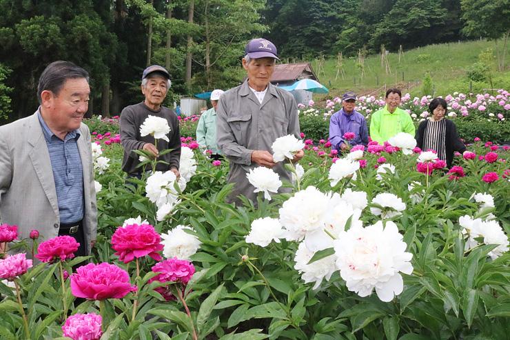 シャクヤクの花を眺める奥村さん(右から2人目)と中山会長(左)ら