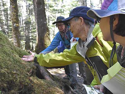 参加者「コケのとりこ」に 白駒池周辺の原生林で観察会