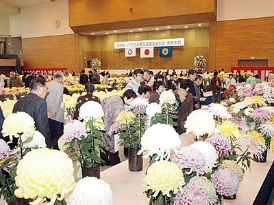 南砺で2019年菊花全国大会
