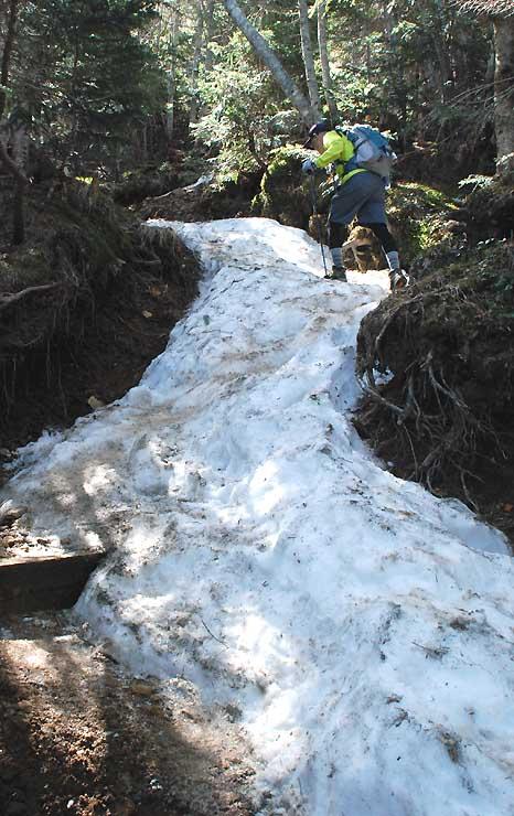 赤岳に通じる樹林帯の登山道は所々に雪が残っていた
