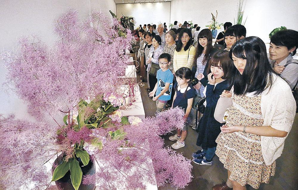 花材の自然美を引き出した作品に見入る来場者=金沢21世紀美術館