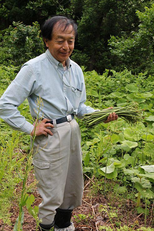 】耕作放棄地を活用した山菜園。今が盛りのワラビを手に「自然を感じてほしい」と話す村山良一さん=十日町市松之山橋詰