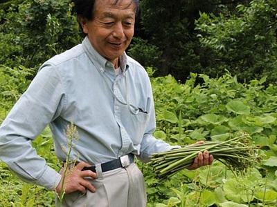 夢膨らむ山菜園 十日町・松之山にオープン