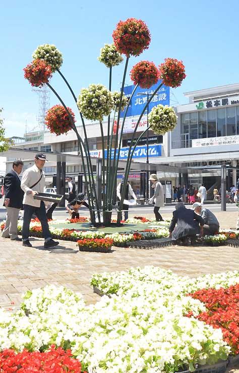 全日本花いっぱい松本大会に向けて松本駅前で花を飾り付けるボランティアら