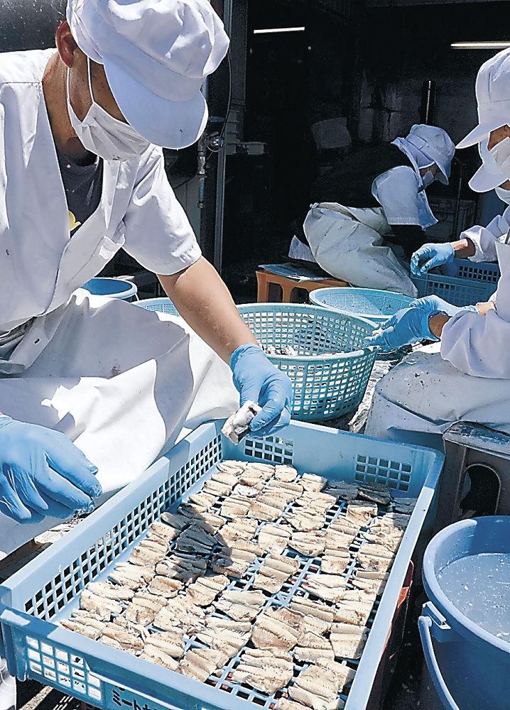 塩ゆでしたトビウオを乾燥用ケースに並べる従業員=輪島市門前町道下