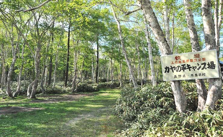 高原シャトル便が停車する木島平村のカヤの平高原