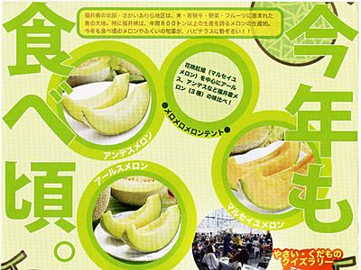 旬の福井県産メロン食べ比べ ハピテラスでまつり