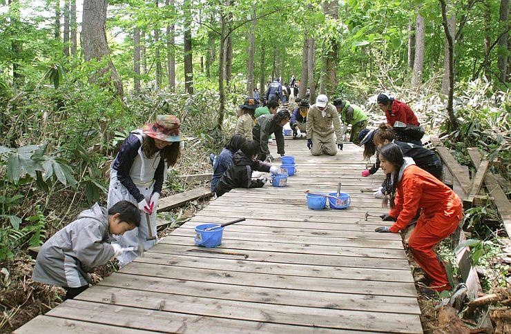 「フジロックの道」と名付けられた木道の補修作業に汗を流すボランティアら=湯沢町の苗場スキー場