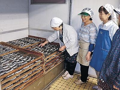 「あごだし」おいしく 珠洲・三崎で生産ピーク