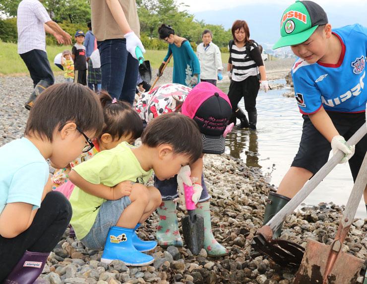 諏訪湖の岸辺に遊び場を作るため、小石を集める子どもたち