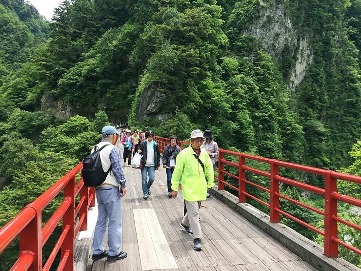 緑あふれる峡谷の景色を楽しみながら奥鐘橋を渡る参加者