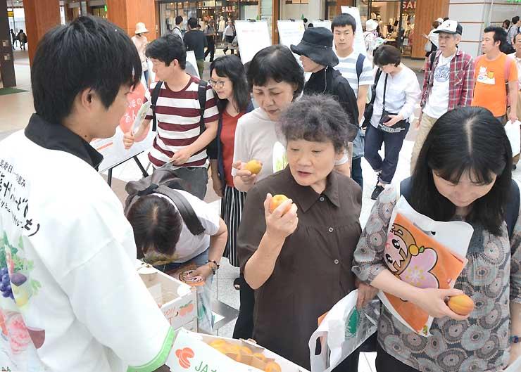 無料配布イベントで千曲市産アンズを手に取る人たち。行列もできた