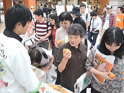 千曲のアンズどうぞ 長野駅でPR、無料配布に列
