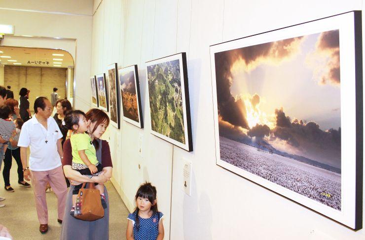 3年ぶりに開かれている世界環境写真展=1日、新潟市中央区
