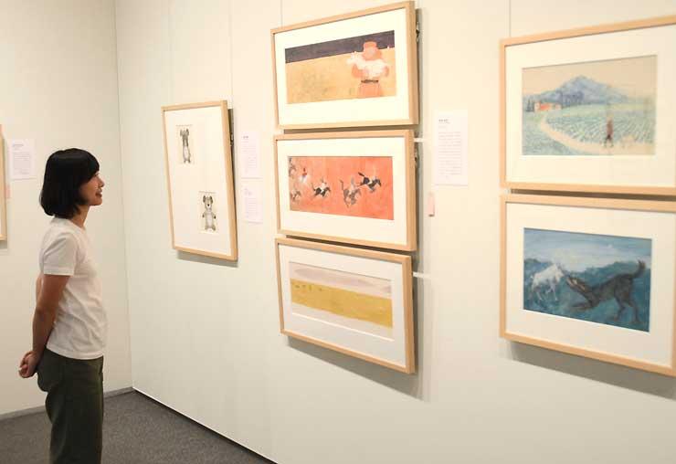 安曇野ちひろ美術館の企画展会場。約100年前から現代までの絵本原画などが並ぶ