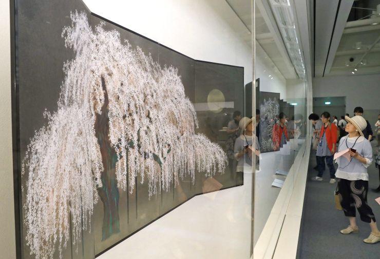 絵画やびょうぶなどの作品が並ぶ加山又造展=7日、長岡市の県立近代美術館