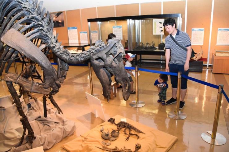 マイアサウラの化石標本を見つめる親子
