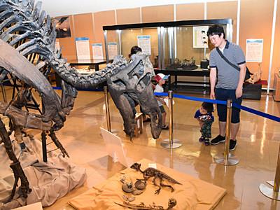 長野市立博物館で、恐竜の企画展始まる