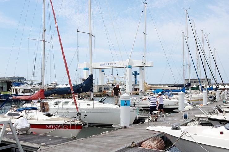 16日の「タモリカップ2017富山大会」に向けてヨットの調整を行うクルー=県新湊マリーナ