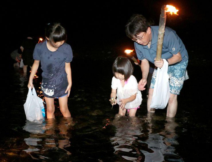 夜の海でたいまつ片手にサザエを探す参加者=17日、佐渡市小木町
