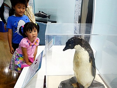探検!南極大陸、氷の世界へ 福井県児童科学館で企画展
