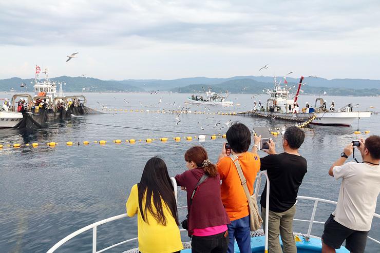 定置網漁の様子を見学するツアー参加者=氷見市沖