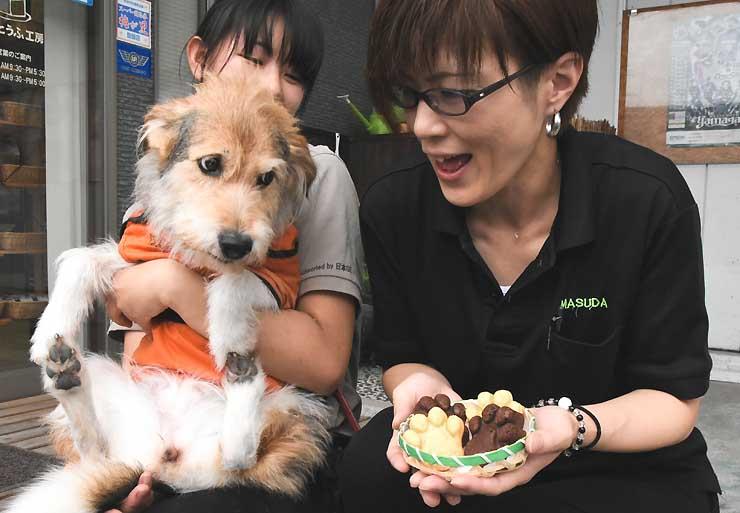 しっとり、ふわふわとした「肉球感」が話題を呼んでいる「ポー焼きドーナツ」。中型犬(左)の肉球と同じ程度の大きさに仕上げた