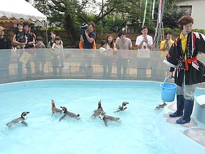 土用の丑の日、ドジョウに大喜び 須坂市動物園