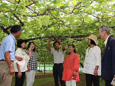 果物狩り準備は万全 観光農園で合同開園式 新潟市南区