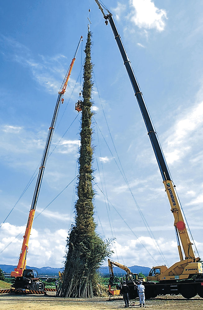 高さ46メートルに組み立てられた大かがり火=川北町の手取川簡易グラウンド