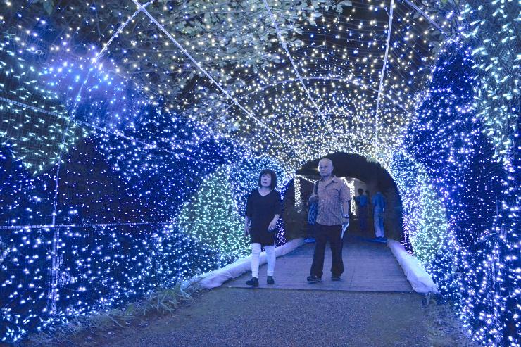 涼しげな雰囲気の「波のトンネル」を楽しむ来場者