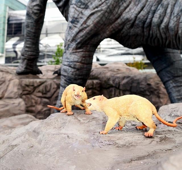 フクイティタンのそばに設置された哺乳類のモニュメント(手前2体)=10日、福井市のJR福井駅西口広場